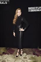 Celebrity Photo: Amy Adams 1659x2500   340 kb Viewed 10 times @BestEyeCandy.com Added 98 days ago