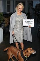 Celebrity Photo: Pamela Anderson 1200x1800   329 kb Viewed 21 times @BestEyeCandy.com Added 30 days ago