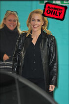 Celebrity Photo: Gillian Anderson 1559x2339   1.6 mb Viewed 3 times @BestEyeCandy.com Added 357 days ago