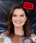 Celebrity Photo: Sela Ward 3150x3803   1.7 mb Viewed 0 times @BestEyeCandy.com Added 404 days ago