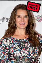 Celebrity Photo: Brooke Shields 2103x3160   1.4 mb Viewed 2 times @BestEyeCandy.com Added 365 days ago