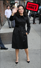 Celebrity Photo: Julia Louis Dreyfus 3056x5072   2.1 mb Viewed 1 time @BestEyeCandy.com Added 225 days ago