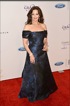 Celebrity Photo: Lynda Carter 2100x3150   826 kb Viewed 99 times @BestEyeCandy.com Added 291 days ago