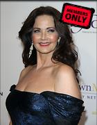 Celebrity Photo: Lynda Carter 3456x4446   1.6 mb Viewed 1 time @BestEyeCandy.com Added 46 days ago