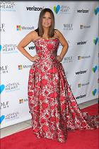 Celebrity Photo: Mariska Hargitay 1200x1800   385 kb Viewed 159 times @BestEyeCandy.com Added 162 days ago