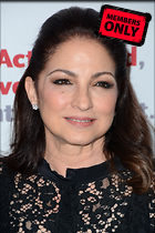 Celebrity Photo: Gloria Estefan 2000x3000   1.7 mb Viewed 0 times @BestEyeCandy.com Added 306 days ago