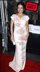 Celebrity Photo: Julia Louis Dreyfus 2767x4951   5.8 mb Viewed 0 times @BestEyeCandy.com Added 224 days ago
