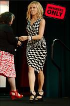 Celebrity Photo: Sheryl Crow 2100x3171   1.3 mb Viewed 1 time @BestEyeCandy.com Added 158 days ago