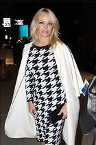 Celebrity Photo: Pamela Anderson 1200x1800   261 kb Viewed 46 times @BestEyeCandy.com Added 46 days ago