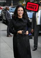 Celebrity Photo: Julia Louis Dreyfus 3616x5104   1.9 mb Viewed 0 times @BestEyeCandy.com Added 225 days ago