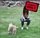 Celebrity Photo: Minka Kelly 2680x2520   1.5 mb Viewed 1 time @BestEyeCandy.com Added 8 days ago