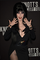 Celebrity Photo: Cassandra Peterson 1470x2205   220 kb Viewed 129 times @BestEyeCandy.com Added 505 days ago