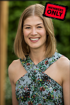 Celebrity Photo: Rosamund Pike 2768x4147   2.1 mb Viewed 1 time @BestEyeCandy.com Added 6 days ago