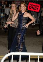 Celebrity Photo: Amy Adams 3000x4256   1.9 mb Viewed 3 times @BestEyeCandy.com Added 99 days ago