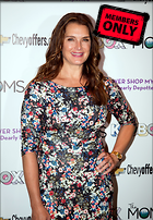 Celebrity Photo: Brooke Shields 3556x5119   3.0 mb Viewed 2 times @BestEyeCandy.com Added 365 days ago