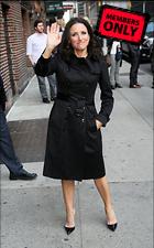 Celebrity Photo: Julia Louis Dreyfus 3128x5016   1.8 mb Viewed 2 times @BestEyeCandy.com Added 225 days ago