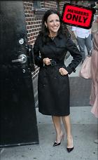 Celebrity Photo: Julia Louis Dreyfus 2874x4674   2.0 mb Viewed 1 time @BestEyeCandy.com Added 225 days ago