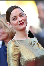 Celebrity Photo: Marion Cotillard 1470x2205   348 kb Viewed 139 times @BestEyeCandy.com Added 363 days ago