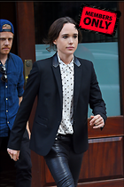Celebrity Photo: Ellen Page 1745x2622   1.9 mb Viewed 3 times @BestEyeCandy.com Added 413 days ago