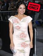 Celebrity Photo: Julia Louis Dreyfus 2880x3814   3.1 mb Viewed 1 time @BestEyeCandy.com Added 331 days ago