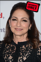 Celebrity Photo: Gloria Estefan 2000x3000   1.5 mb Viewed 0 times @BestEyeCandy.com Added 306 days ago