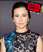 Celebrity Photo: Linda Cardellini 3289x4010   2.6 mb Viewed 0 times @BestEyeCandy.com Added 13 days ago
