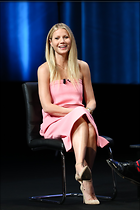 Celebrity Photo: Gwyneth Paltrow 2124x3187   1.2 mb Viewed 297 times @BestEyeCandy.com Added 567 days ago
