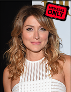 Celebrity Photo: Sasha Alexander 3090x3994   2.0 mb Viewed 7 times @BestEyeCandy.com Added 637 days ago