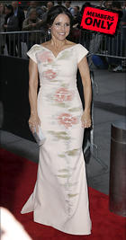 Celebrity Photo: Julia Louis Dreyfus 2066x3945   2.4 mb Viewed 1 time @BestEyeCandy.com Added 331 days ago