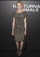Celebrity Photo: Gretchen Mol 1200x1672   178 kb Viewed 33 times @BestEyeCandy.com Added 120 days ago