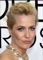Celebrity Photo: Gillian Anderson 1200x1669   236 kb Viewed 194 times @BestEyeCandy.com Added 317 days ago