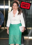 Celebrity Photo: Gloria Estefan 2190x3000   1.4 mb Viewed 3 times @BestEyeCandy.com Added 962 days ago