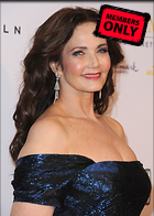 Celebrity Photo: Lynda Carter 3000x4200   1.7 mb Viewed 1 time @BestEyeCandy.com Added 46 days ago
