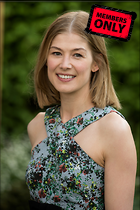 Celebrity Photo: Rosamund Pike 2921x4376   2.2 mb Viewed 1 time @BestEyeCandy.com Added 6 days ago