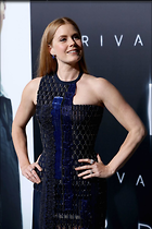 Celebrity Photo: Amy Adams 6 Photos Photoset #347582 @BestEyeCandy.com Added 74 days ago