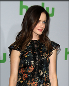 Celebrity Photo: Alexis Bledel 1200x1481   254 kb Viewed 32 times @BestEyeCandy.com Added 73 days ago