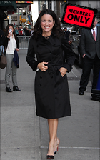 Celebrity Photo: Julia Louis Dreyfus 2652x4250   2.9 mb Viewed 1 time @BestEyeCandy.com Added 225 days ago