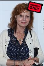 Celebrity Photo: Susan Sarandon 2533x3802   1.9 mb Viewed 3 times @BestEyeCandy.com Added 198 days ago