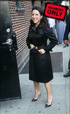 Celebrity Photo: Julia Louis Dreyfus 3072x5016   2.6 mb Viewed 2 times @BestEyeCandy.com Added 225 days ago