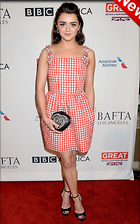 Celebrity Photo: Maisie Williams 1200x1921   338 kb Viewed 28 times @BestEyeCandy.com Added 6 days ago