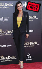 Celebrity Photo: Angie Harmon 2400x3982   1.5 mb Viewed 8 times @BestEyeCandy.com Added 430 days ago