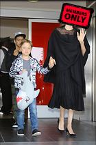 Celebrity Photo: Angelina Jolie 2482x3723   2.6 mb Viewed 0 times @BestEyeCandy.com Added 212 days ago
