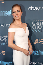 Celebrity Photo: Amy Adams 683x1024   155 kb Viewed 23 times @BestEyeCandy.com Added 15 days ago