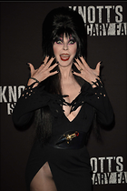 Celebrity Photo: Cassandra Peterson 1470x2205   215 kb Viewed 121 times @BestEyeCandy.com Added 505 days ago
